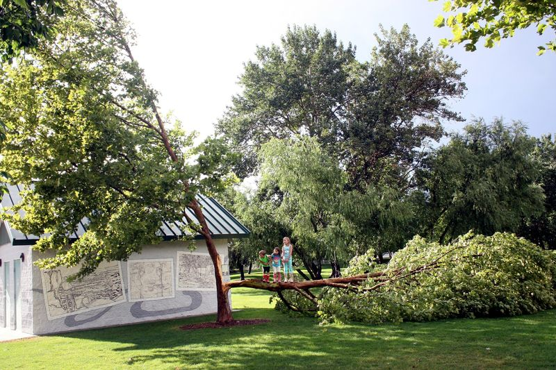 Baggley park after storm_8771